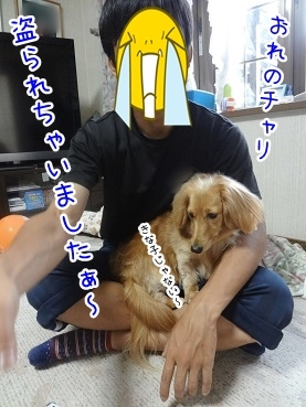 kinako2864.jpg