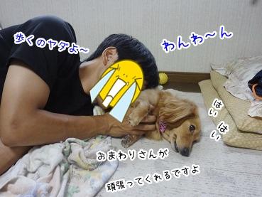 kinako2867.jpg
