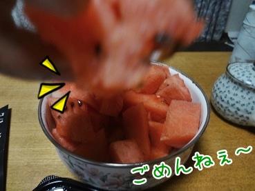 kinako2901.jpg