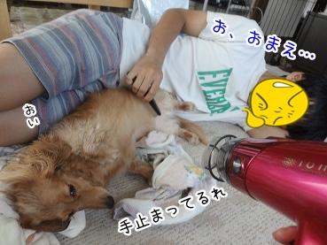kinako2949.jpg