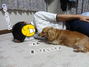 kinako2951.jpg