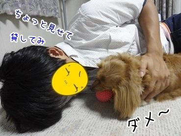 kinako2957.jpg