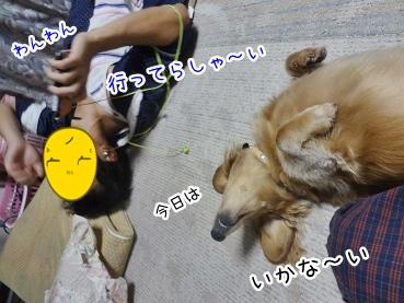 kinako3042.jpg