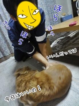 kinako3046.jpg
