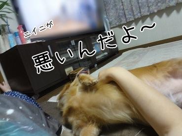kinako3054.jpg