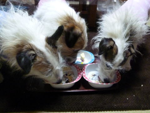 クリスマスケーキ(5)