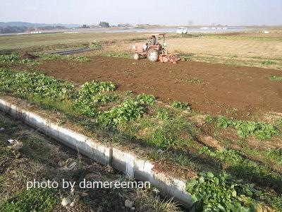 2014.12.29第三の畑