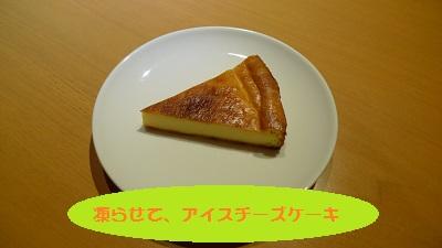 P1080048.jpg
