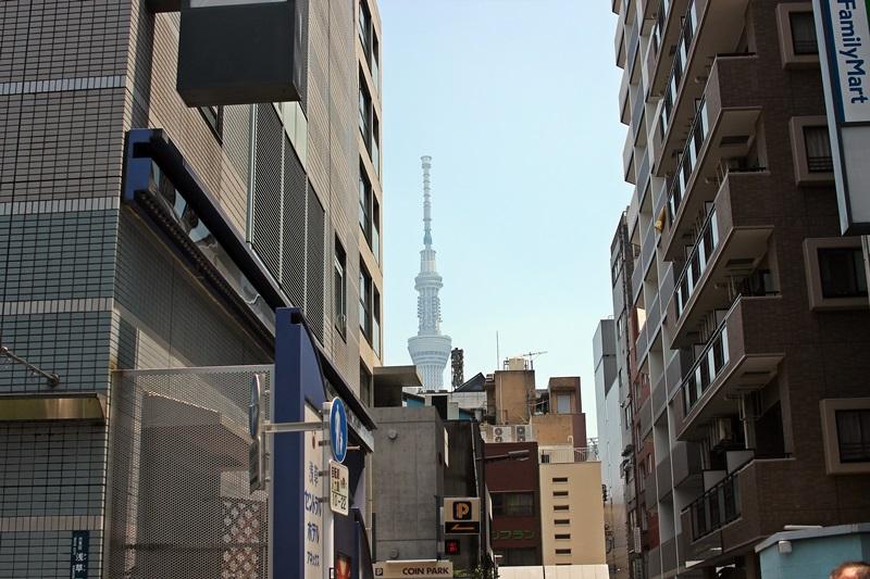 nobunobu12300295.jpg