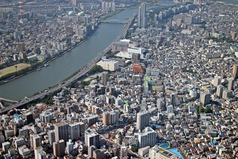 nobunobu12300312.jpg