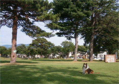 03 500 20150725 記念碑公園:猛暑の朝01 Erie