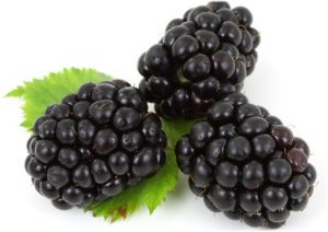01 300 blackberries