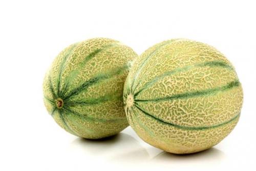 03 melon