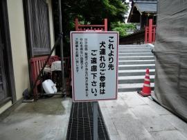 20150620_1118_55.jpg