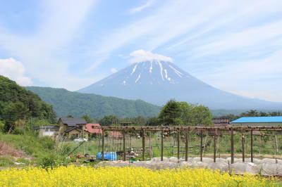 ザ・日本の風景