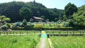 柳生花しょうぶ園
