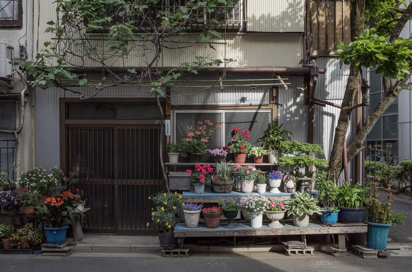 150511浅草 (2 - 1)-60