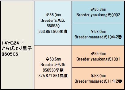 14YG24-1 系統図