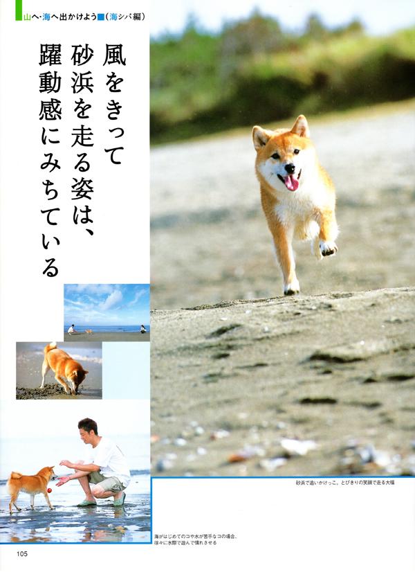 20_01.jpg