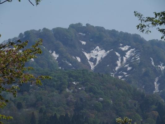 城山尾根からの鋸山