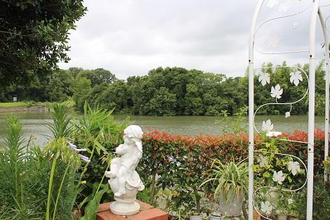 庭からため池