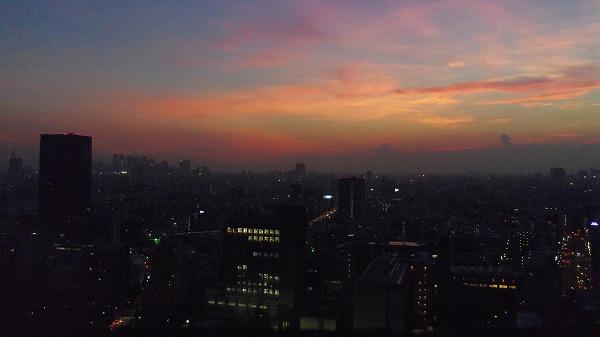 文京シビックセンター 富士山
