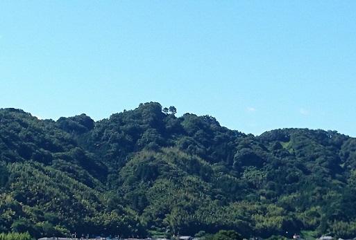 山歩きで登った金胎寺城跡