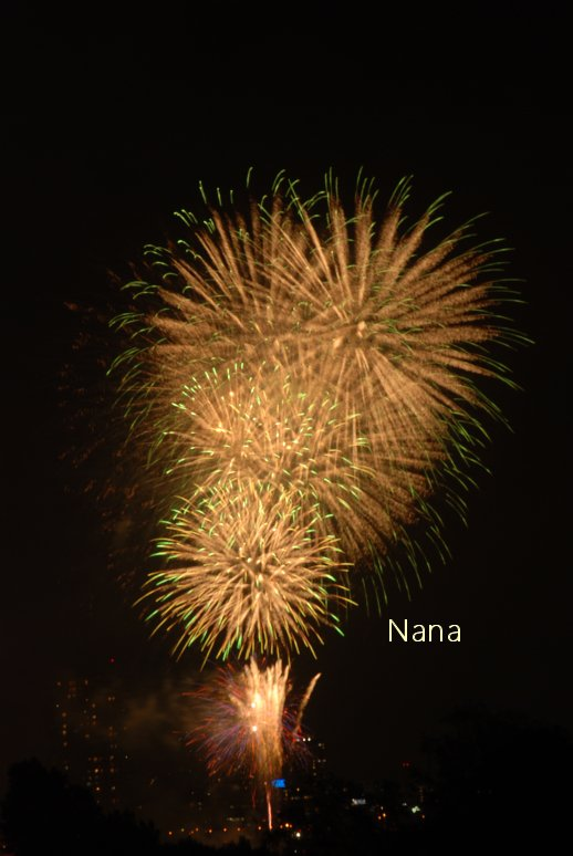 fireworks1-2.jpg