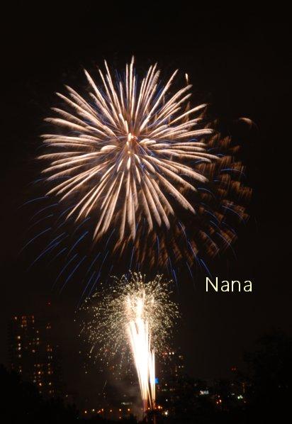 fireworks1-3.jpg