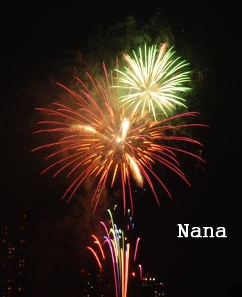 fireworks1-5.jpg