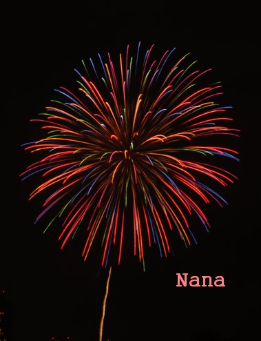 fireworks1-6.jpg
