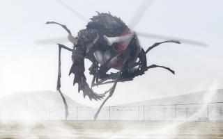 Bug(1).jpg