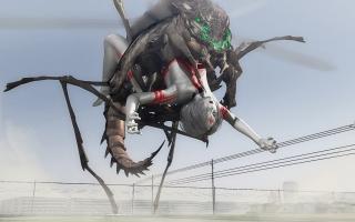 Bug(2).jpg