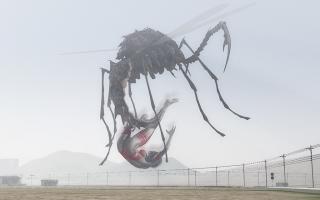 Bug(3).jpg