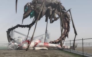 Bug(6).jpg