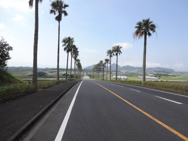国道を逸れて長崎鼻へ