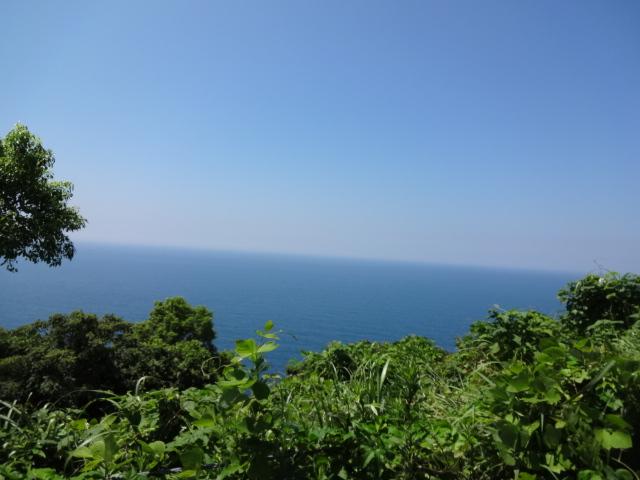 時折見せる海