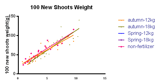 100 new shoot weight linear