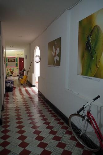 s-kolibri hostel (7)