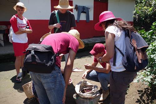 s-hacienda guayabal (20)