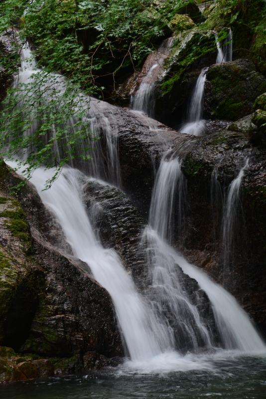 「うぐいす滝」