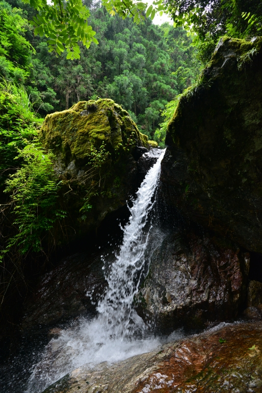 「不動の滝」