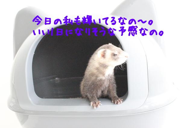 goTlp1l_HRdk7ne1433745363_1433745417.jpg