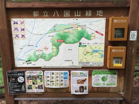 hachikokuyama2_070415