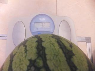 すいかの体重