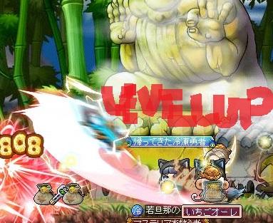 Maple150810_011610.jpg