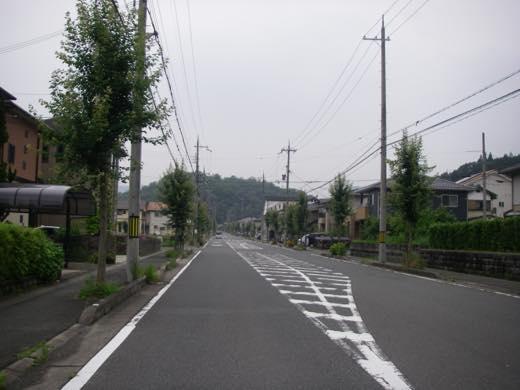 _r522004.jpg