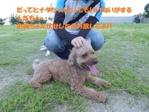 P1000143_convert_20150802083941.jpg