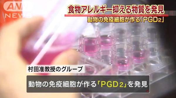 0323_Tokyo_University_Allergie_yokusei_busshitsu_hakken_PGD2_201507_03.jpg