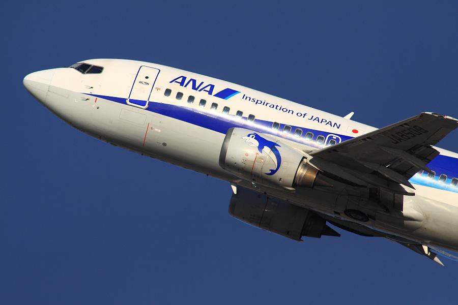 ANA WINGS B737-54K / ANA547 (JA8500)@RWY14Rエンド・猪名川土手